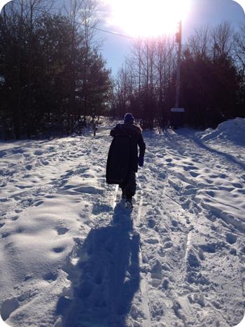 Sledding at Green's Creek, Ottawa