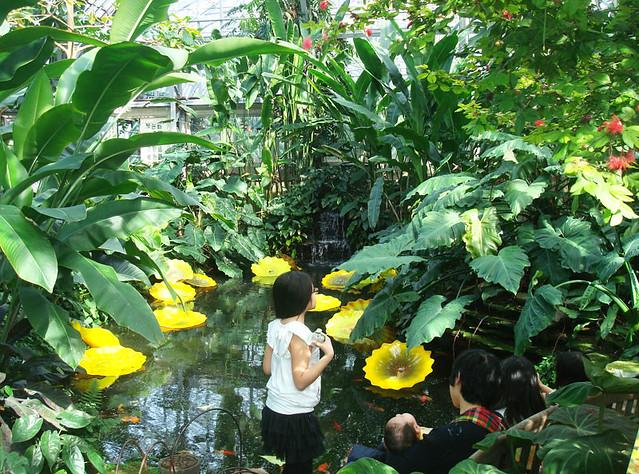 kids-conservatory