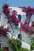 Kreta 2009-1 225
