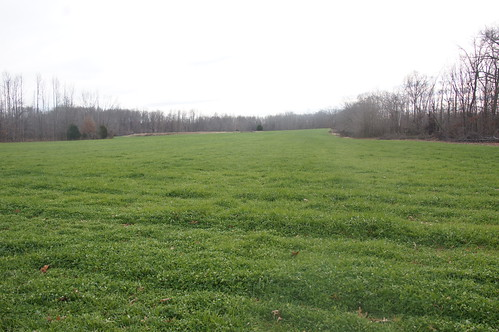 The Cutliffs participated in NRCS drought conservation practices, including pasture reestablishment to improve their farm and protect natural resources.