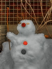 Apples of Paradise in Ice and Snow - Lotti`s Snowman - Paradiesäpfel in Eis und Schnee