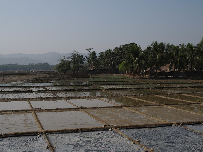 Salt Field in Teknaf