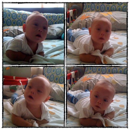 good morning! our little champ says hi! :D