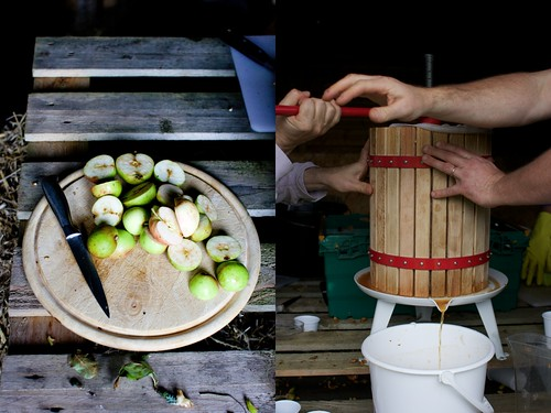Old school apple pulping and pressing