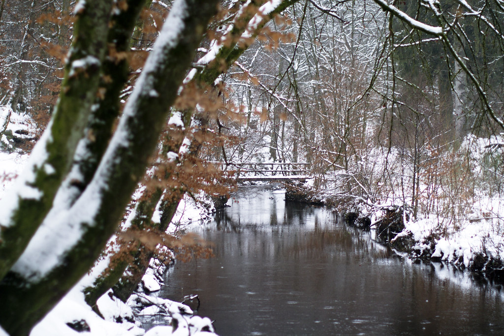 bridge over the river in the snowy woods
