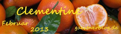 Garten-Koch-Event Februar: Clementine  [28.02.2013]