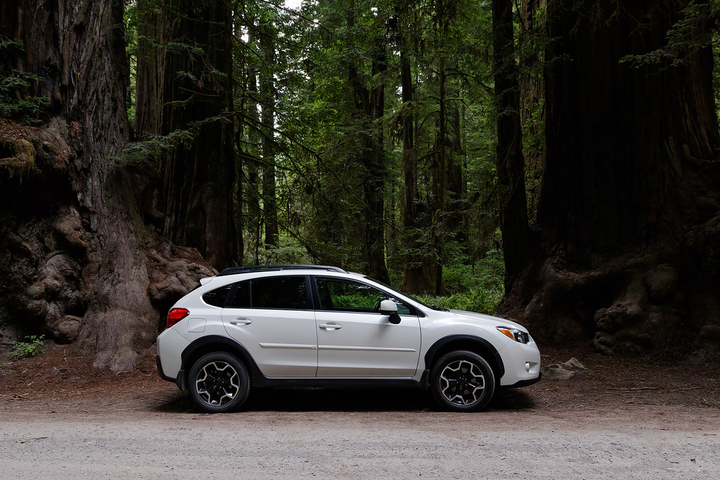 A white Subaru XV Crosstrek is parked in front of a redwood forest