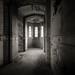 A Threatened Legacy: Epilogue | Study II by Jeff Gaydash