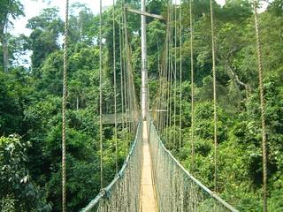 Kakum Park Ghana - Canopy Walk