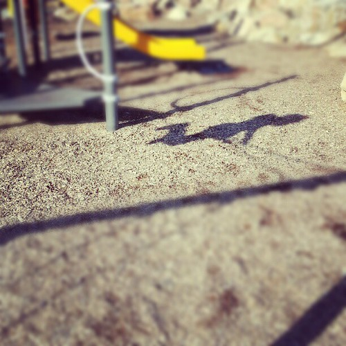 Shadow of a swinger.
