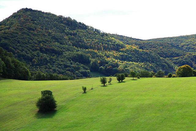 The landscape auf Austria.