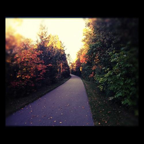 littletraversewheelway uploaded:by=flickrmobile flickriosapp:filter=chameleon chameleonfilter