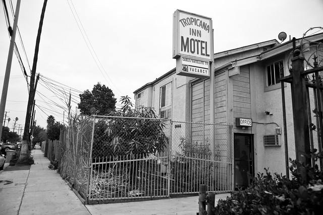 the tropicana inn motel