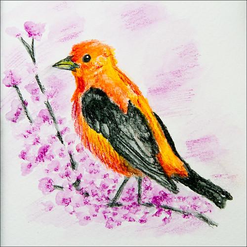 Bird by Amaviael