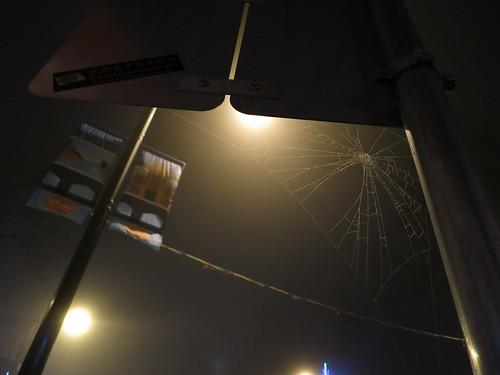 Fog: Cobweb