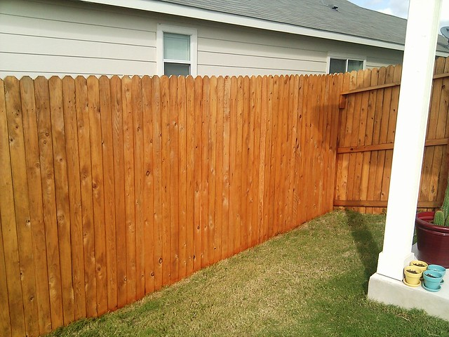 Fence Staining Flickr Photo Sharing