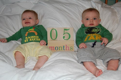 5 months old! Wow!