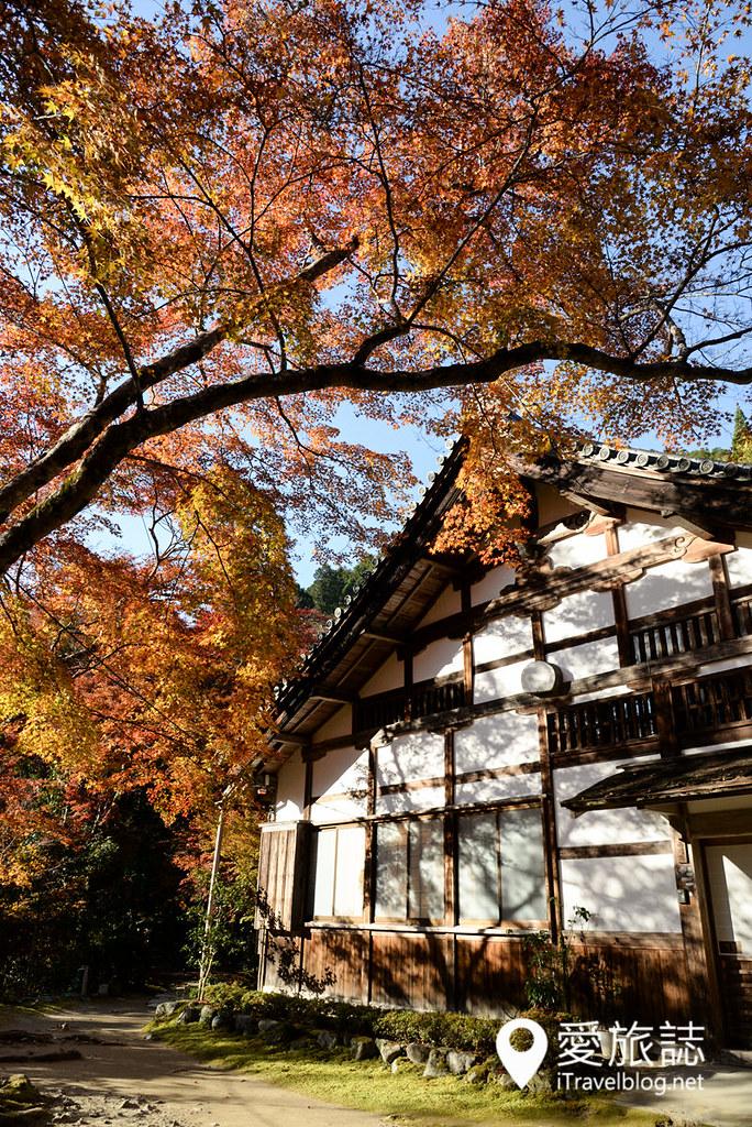 京都赏枫景点 高雄西明寺 19