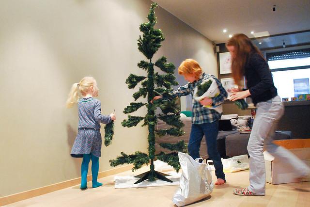 Kerstboom (3 van 22).jpg