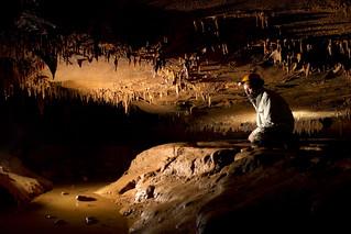 Dave Pelren 1, Jarrells Cave, Coffee Co, TN