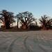 Botswana - Nxai Pan National Park by Christian@94