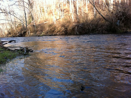 Gunpowder River Flyfishing during the Holidays