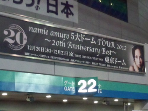 「namie amuro 5大ドームTOUR 2012 ~20th Anniversary Best~」