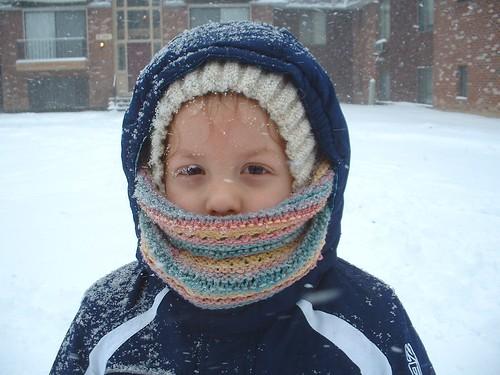 snowy day 12-27-12 1
