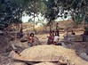 Children in war zone- Cambodia 1973 by loveexploring