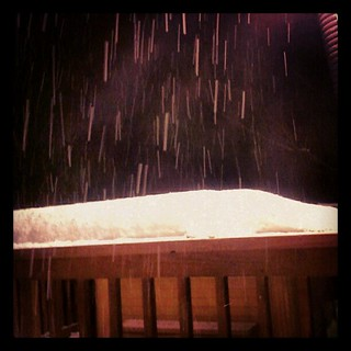 The #snow is falling again!
