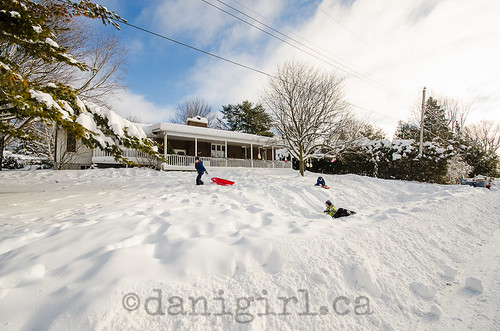 Front yard sledding-2