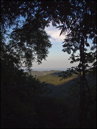 elyunquepuertoricorainforestoceanview islaecantada natureelyunquepuertoricorainforestoceanview