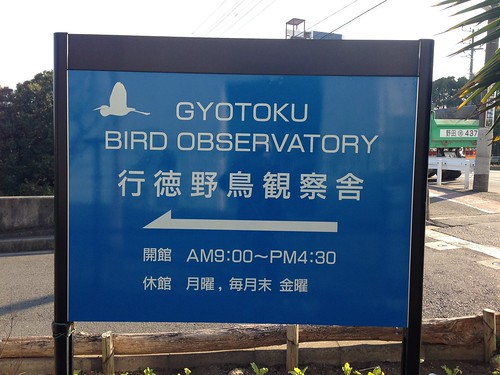 行徳野鳥観察舎