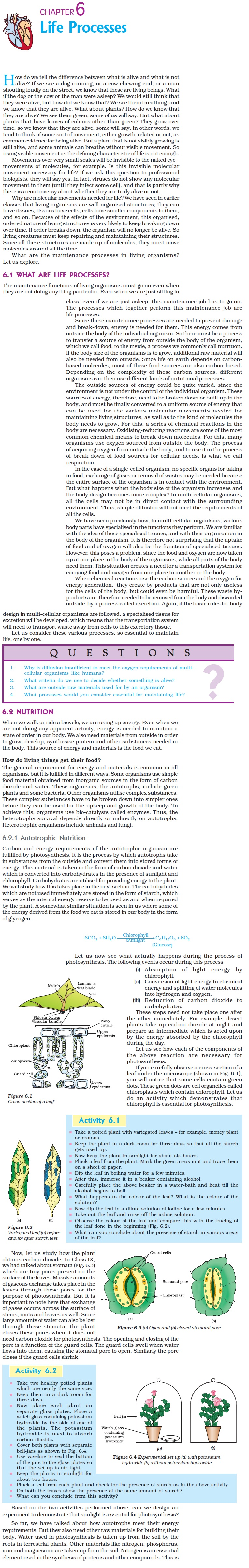 NCERT Class X Science: Chapter 6 - Life Processes