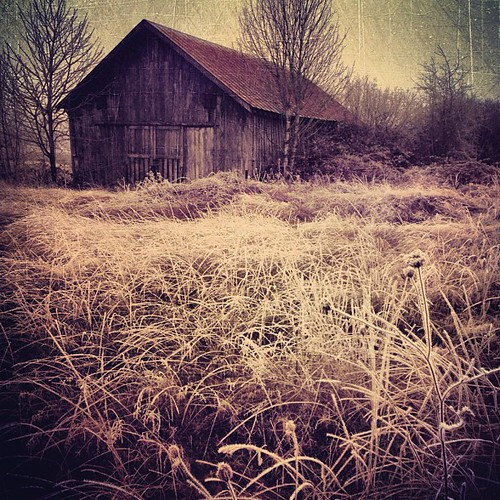 old building texture field oregon barn rural square landscape ian photography with post image 5 farm center images sierra created squareformat processing shack brooks iphone sane labish phonography iphoneography instagramapp uploaded:by=instagram instavu