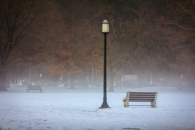 The Bench and Lamp Post