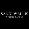Sandi Wallis - Photographer