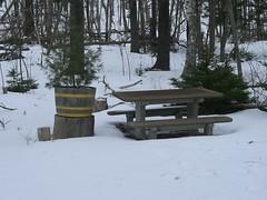 MacDonald Park 013