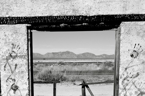 Framing the Arizona desert