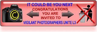 Invite-L3-Edit.jpg