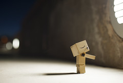 Danbo Says 'Take Me To Your Leader'