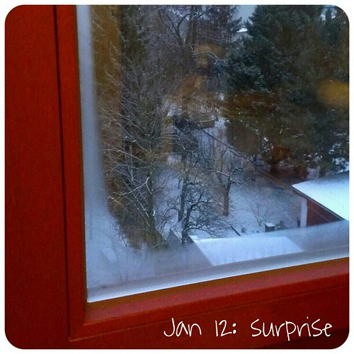 Jan 12: surprise .. it's #winter again .. #fmsphotoaday