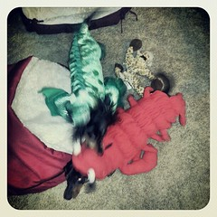 #attack! #justcantgetenough #wienerwars #ilovemyanimals
