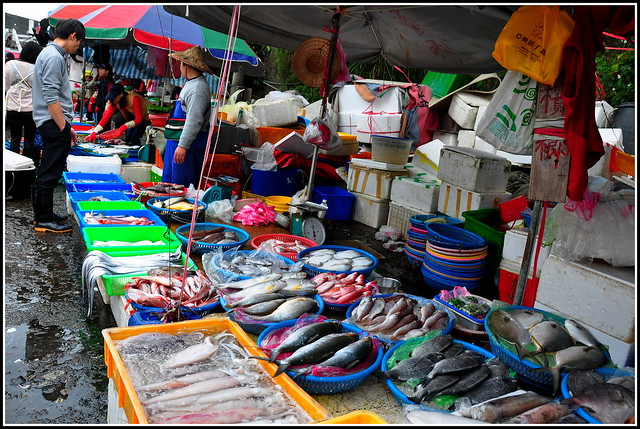 Taiwanese local fish market flickr photo sharing for Local fish market