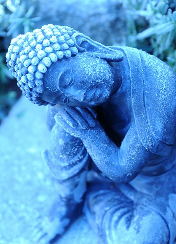 Icy statue of young Lord Buddha, considering, A Garden for the Buddha, Seattle, Washington, USA by Wonderlane