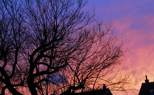 city sky sun holland tree netherlands clouds sunrise canon eos dawn day colours cloudy nederland wolken zon leidschendam icapture zonsopkomst leidschendamvoorburg flickrhivemindgroup