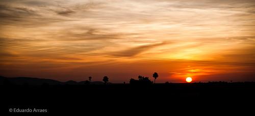 morning brazil sky sun sol southamerica nature colors yellow brasil clouds sunrise cores landscape amazon natureza paisagem céu amarelo latin nuvens latina manhã roraima savanna nascerdosol américadosul amazônia savana amajari serradotepequém