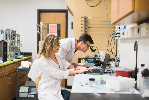 "Summer Undergraduate Research Interns hard at work in the labs. ""There is still so much to still discover in petroleum engineering - we are looking for the next thing to revolutionize the industry."" - UT PGE senior Lauren Wucinski"