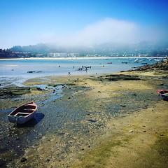 Conozco pocos lugares donde haya tanta serenidad y con tanto encanto como #aldan Una delicia!. (Hasta con niebla). #Cangas @GALICIA #aldán