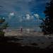 Beauty in the Florida Keys